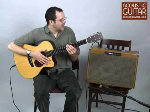 Acoustic Guitar Reviews the UltraSound Pro-250 Amp