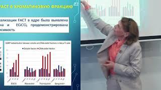 Смотреть видео Механизмы антиканцерогенного действия природных соединений. Якубовская М.Г. (Москва) онлайн