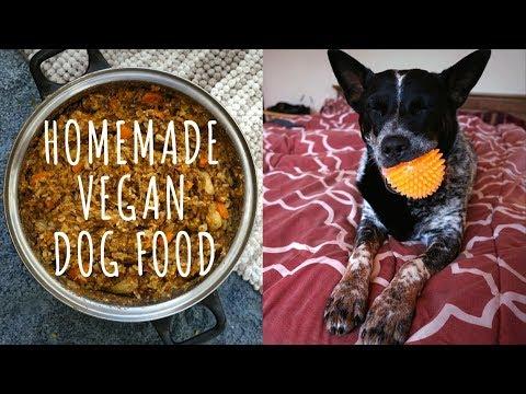 Homemade VEGAN Dog Food Recipe SUPER Cheap, Healthy & Easy