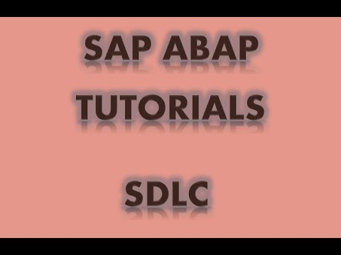 SAP ABAP TUToRIALS - SAP Projects, Process, Landscape, SDLC