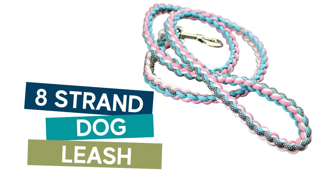 Dog Collar Tutorial