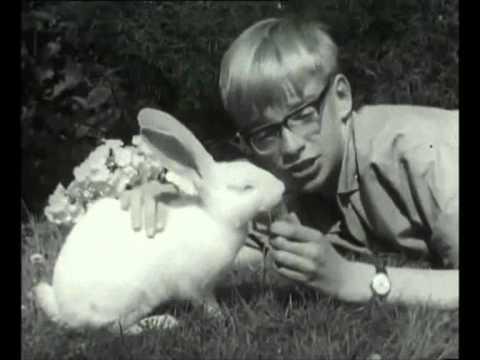Mijn Konijn en Ik  • Bah, September (1966)