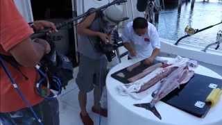 Fresh Sashimi Off A Fishing Boat - How To Make Sushi Series