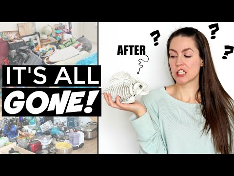 🏠 EXTREME DECLUTTERING ENTIRE HOME | Minimalist Family Before & After KONMARI METHOD & Minimalism