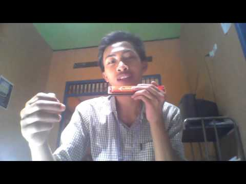 Cara mudah bermain harmonika 24 hole