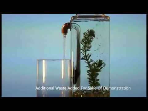 Noclean Aquarium From Mrgproducts Com Youtube