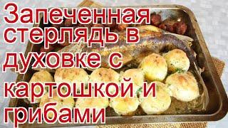 Как приготовить стерлядь пошаговый рецепт - Запеченная стерлядь в духовке с картошкой и грибами