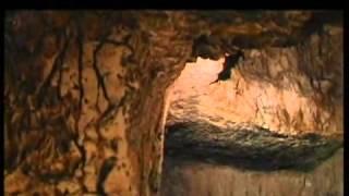 Святыни христианского мира. Гроб Господень(Гроб Госпо́день, или Свято́й Гроб (греч. Αγιος Τάφος) — главная святыня христианского мира, гробница в скале..., 2014-04-17T10:14:25.000Z)