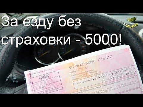 # 139 Вся СОЛЬ: За езду без страховки - 5000!