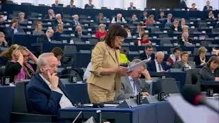 Intervento in aula di Patrizia Toia sul futuro dell'Europa col Presidente della Repubblica francese Emanuel Macron