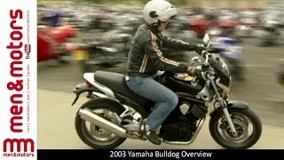 2003 Yamaha Bulldog Overview