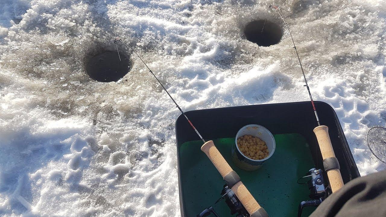 Ловля на зимней фидер