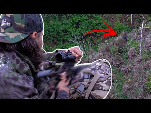 The Epic Journey Of Bear Hunting! (FIRST BEAR KILL)