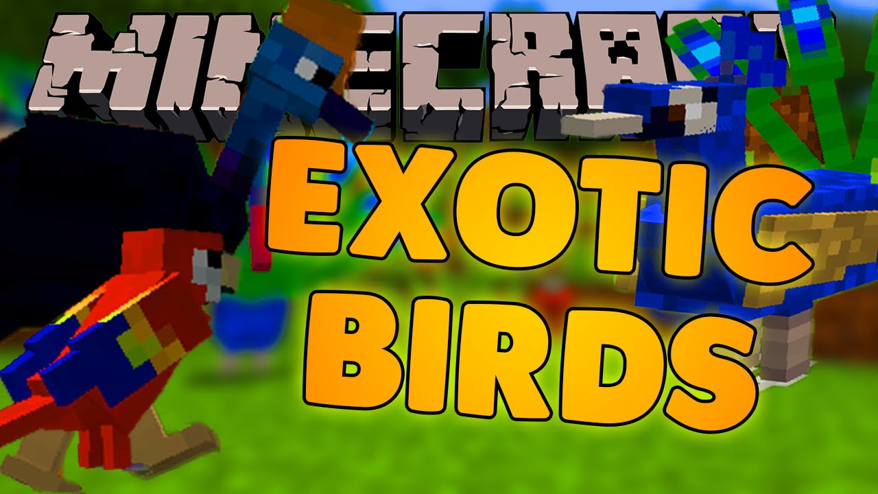 Exotic Birds Minecraft Mod Showcase 1089 Youtube