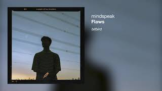 Flaws - mindspeak