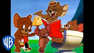 Tom & Jerry | Best of Jerry Mouse | Classic Cartoon Compilation | WB Kids