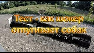 Тест - как электрошокер отпугивает собак(Тестируем - как электрошокер отпугивает собак. В данном тесте использовался электрошокер - фонарик Police..., 2014-06-22T20:12:17.000Z)