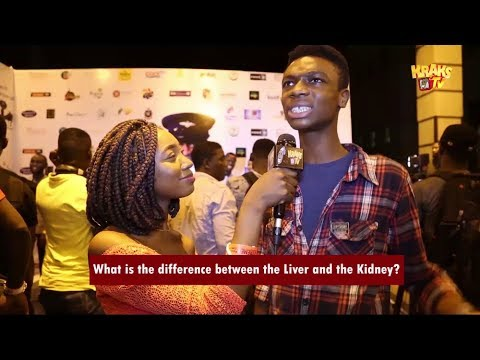 What is the difference between the Liver and the Kidney?  KraksTV Funny Viral Video