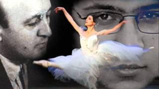 Aria Turkan _ Min Bir Gece Xatiresi (memorical senses from Fikret Amirov