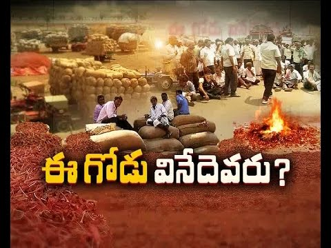 No Support Price | No Govt . Support | Mirchi Farmers Face Difficult Situation | Idi Sangathi