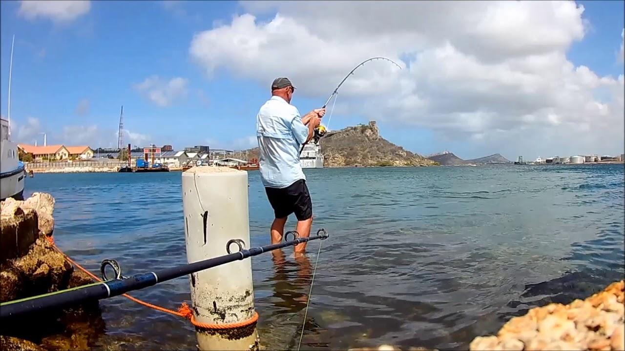 tarpon fishing curacao - YouTube  Tarpon