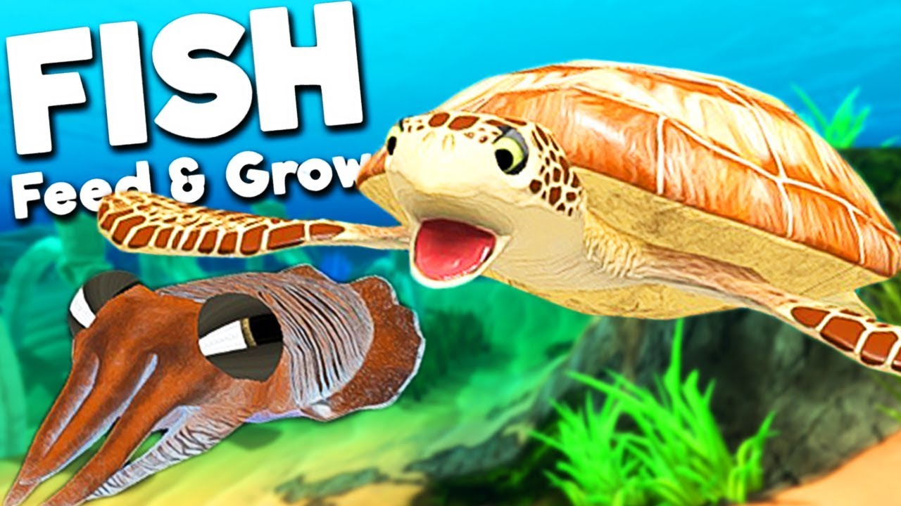 Giant Sea Turtle Vs New Cuttlefish Feed And Grow Fish