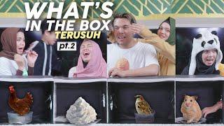 Part 2 Lebih Lemas Lagi, Shock, Kabur Pas Liat Isinya What's In The Box Challenge | Gen Halilintar