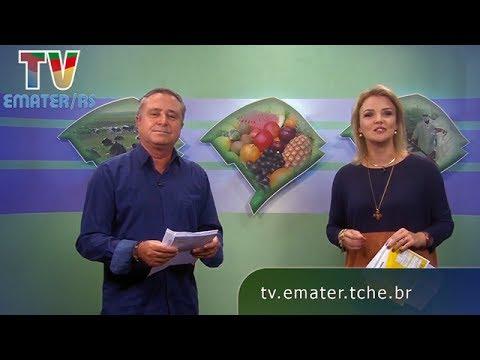 TV Emater - Rio Grande Rural