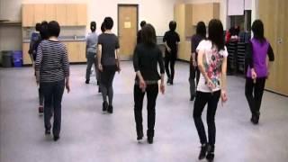 Duck Soup - Line Dance [Danced u0026 Walk Thru.]