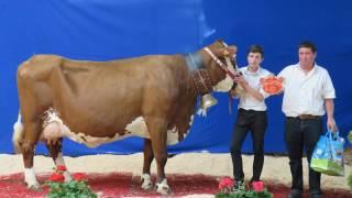 Journées laitières 2017 : photos de l'integralité des lauréats et plus encore