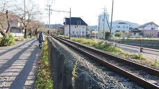 2019年11月10日  長瀞 SL  秩父鉄道  難関突破 受験生かな
