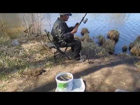рыбалка на карпа в десногорске