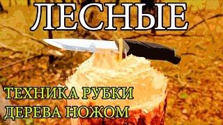 Как срубить дерево ножом   How To Cut Down a Tree With a Knife(Простая техника рубки дерева ножом. Будет полезна тем, кто по какой-то причине остался в лесу без топора., 2015-10-06T17:17:21.000Z)