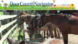 Things to Do in Door County Wi - From a Kid's Point of View!