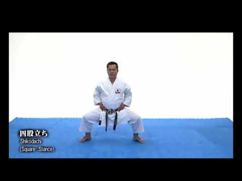 [剛柔流] Gojuryu karate basic stances FOR BEGINNERS