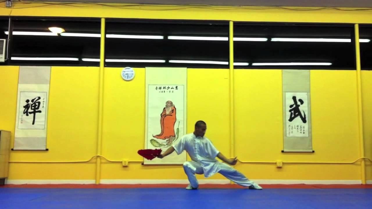 Chinese Shaolin Kung Fu