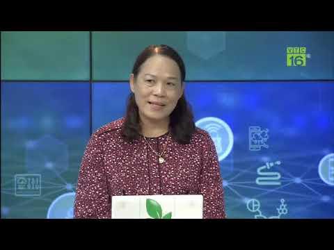 [Trực tiếp] Tổng đài nông nghiệp, ngày 26/01/2021 (từ 10h25 – 11h25) | VTC16