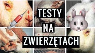 TESTY NA ZWIERZĘTACH | wszystko co musisz wiedzieć | kosmetyki (nie)testowane/wegańskie 🌿