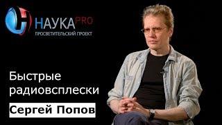 Сергей Попов - Быстрые радиовсплески