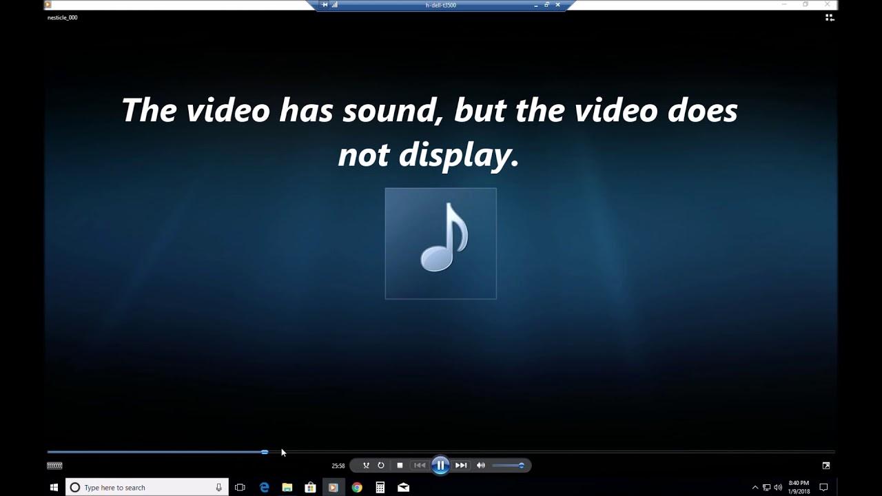 windows vista avi codec download