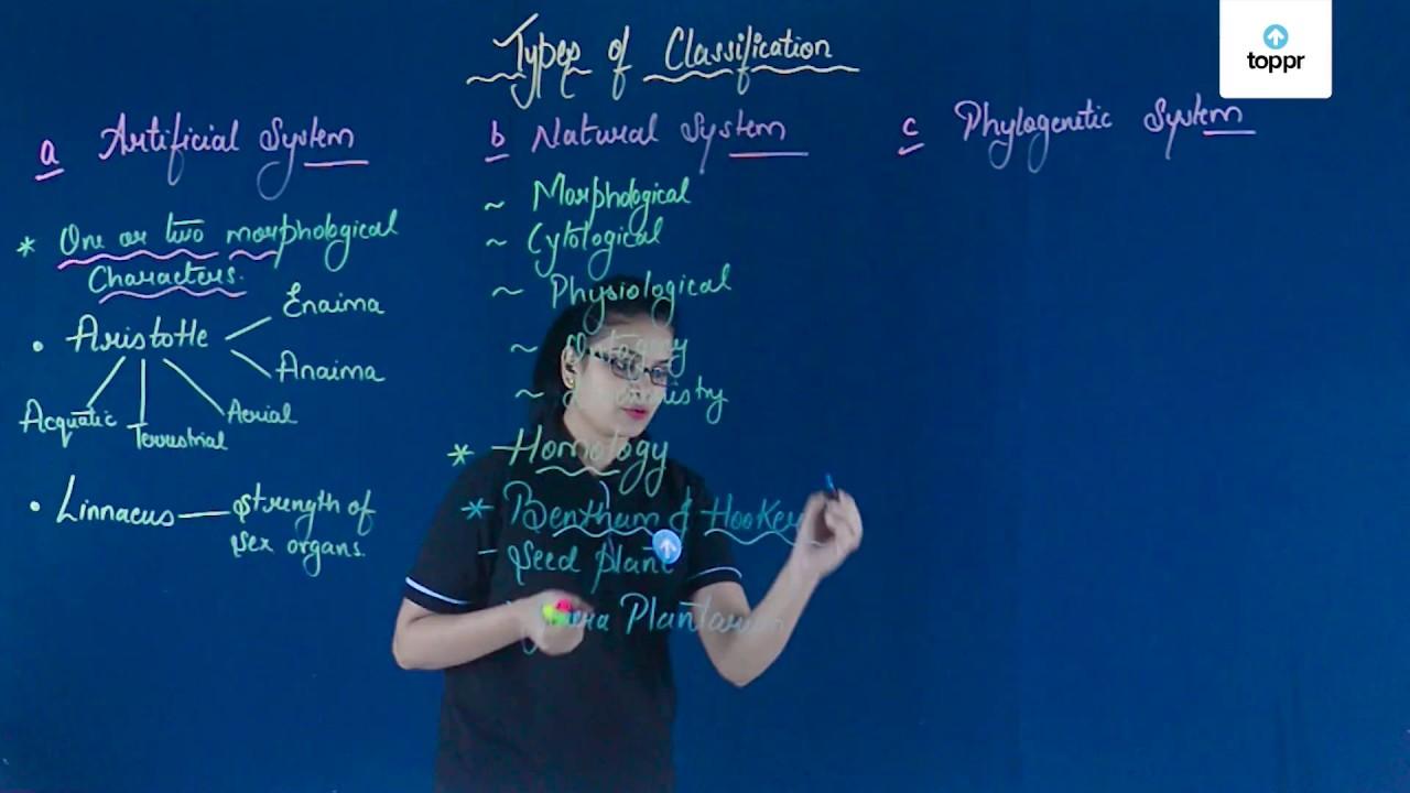 Kingdom Plantae: Explanation, Classification, Concepts