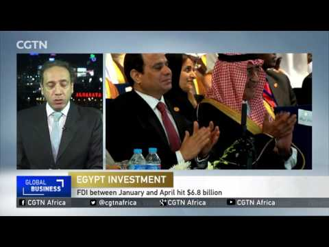 Egypt's investment ministry submits bylaws to recently ratified law