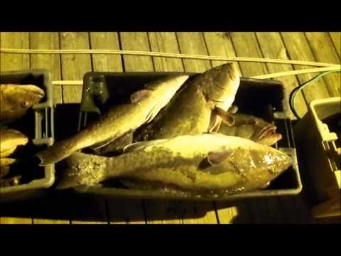 Myrtle Beach Deep Sea Fishing | North Myrtle Beach Fishing Charters