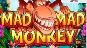 Slot Machine - Mad Mad Monkey