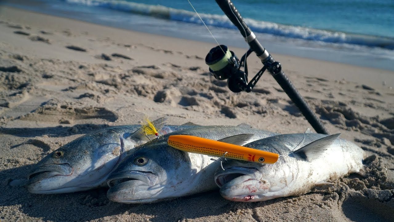 FISH Go NUTS Over This LURE   (Surf Fishing for Giant Bluefish)