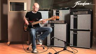 Jazz bass vs Precision vs Music Man Stingray Comparison