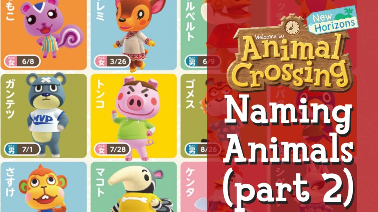 Jackie Names Animal Crossing Characters Part 2 Youtube