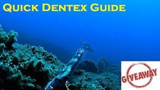 Spearfishing | Quick Dentex Guide + GIVEAWAY - Ψαροντούφεκο Οδηγός Σύλληψης Συναγρίδας + Κλήρωση ✅