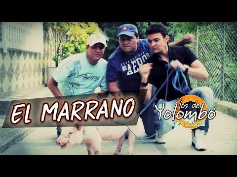 El Marrano - Los De Yolombó l Video Oficial