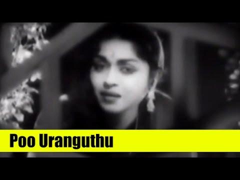 Tamil Hit Song - Poo Uranguthu - Thaai Sollai Thattadhe - M. G. R, B. Saroja Devi, S. A. Ashokan